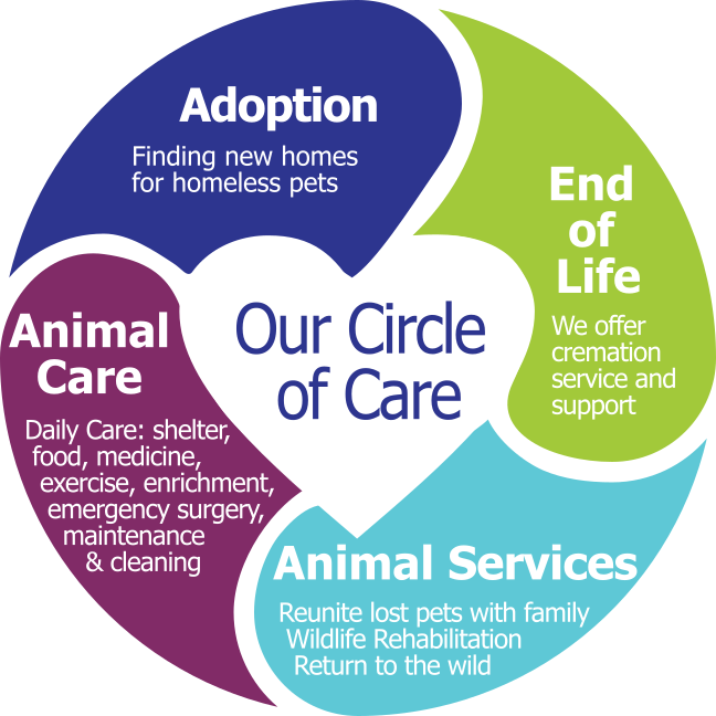 Our Circle of Care. Adpotion, Animal Care, Animal Services, End of Life