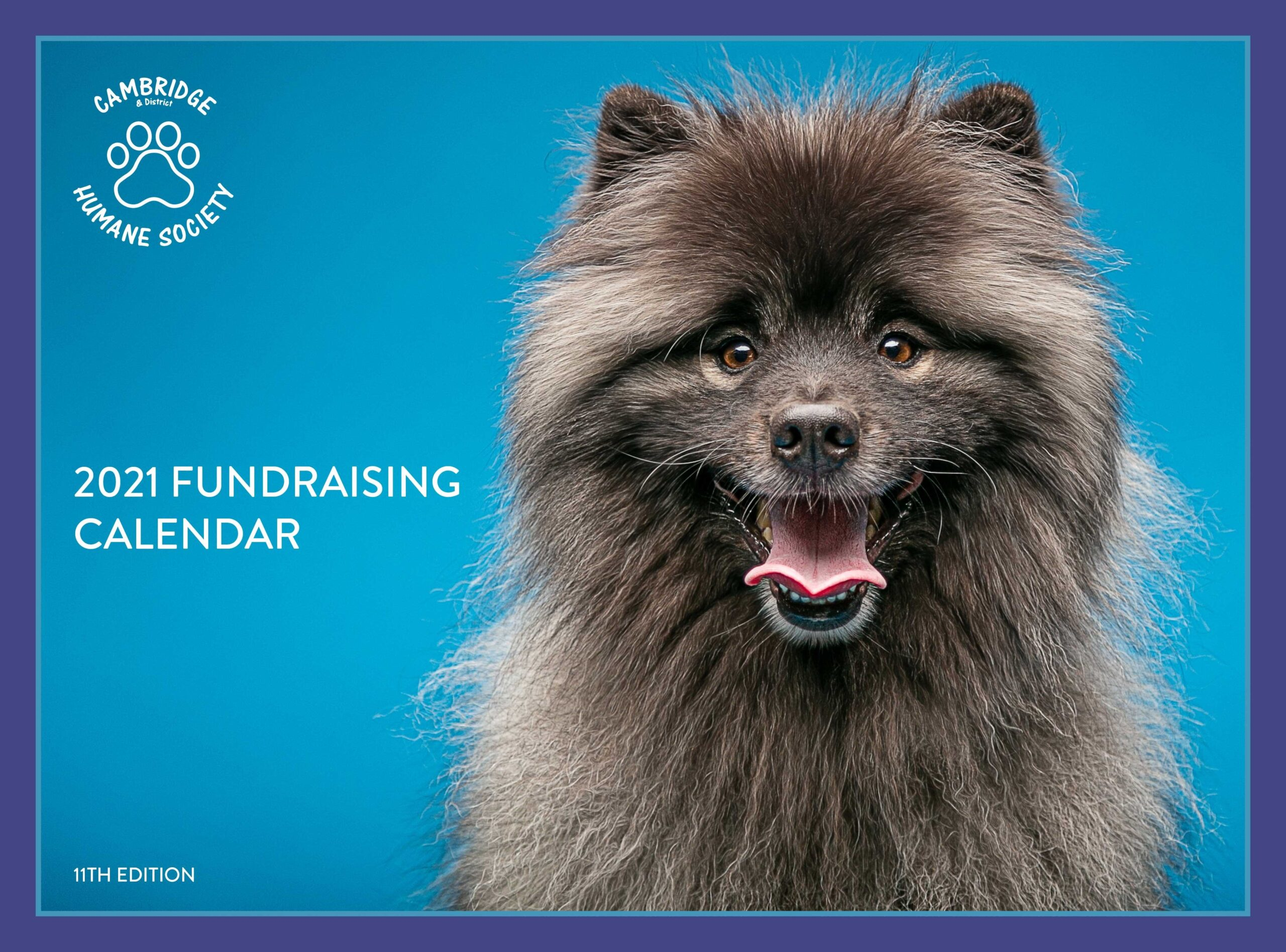 Purchase Your Copy of the Cambridge & District Humane Society 2021 Fundraising Calendar